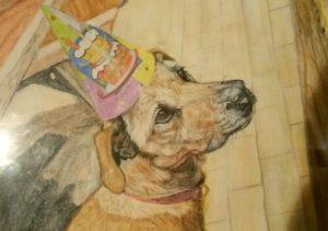 Derwent watercolour pencils and paper